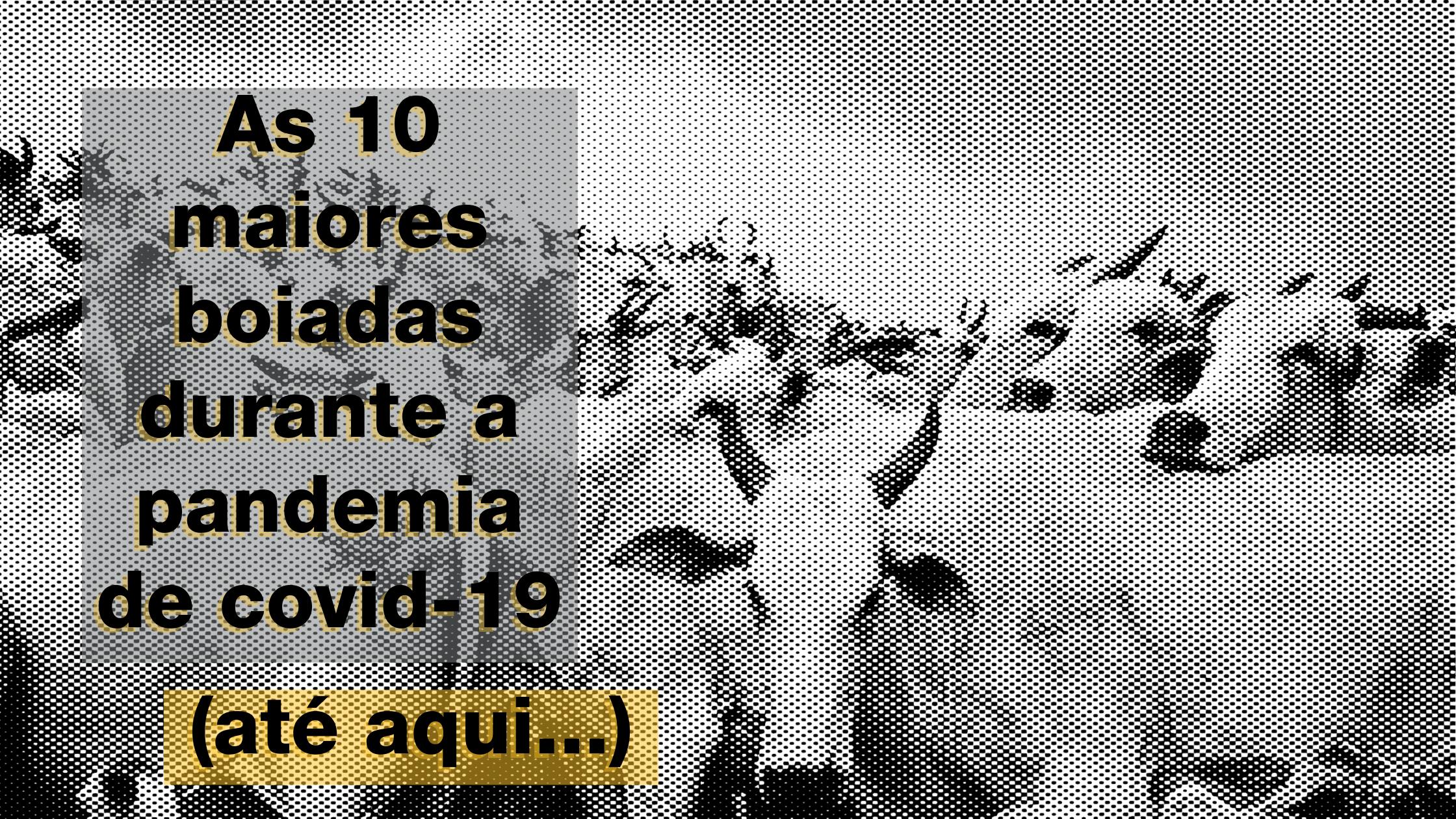Montagem com foto de bois e texto: As 10 maiores boiadas durante a pandemia de covid-19 (até aqui...)