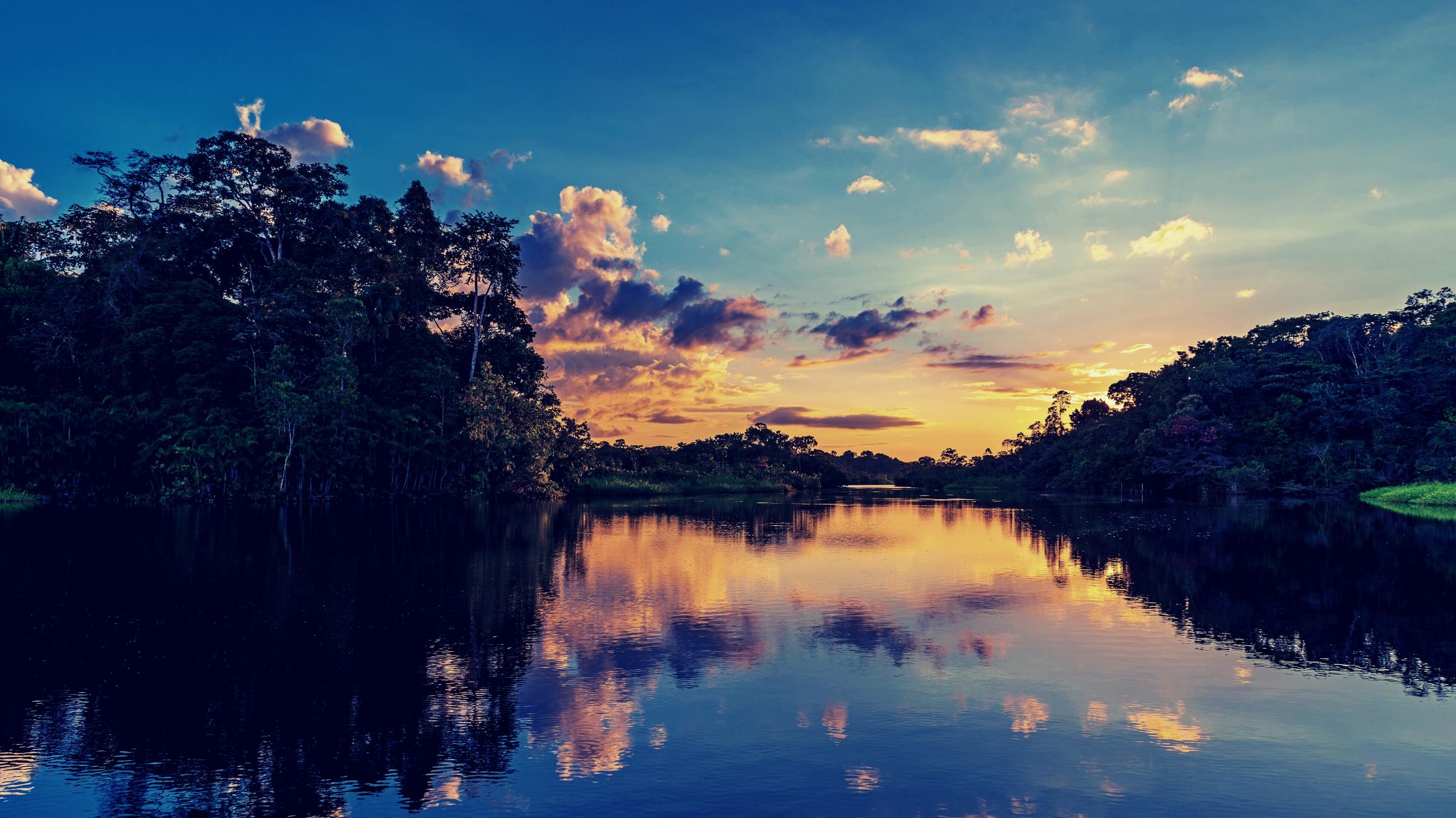 Imagem da Amazônia, com rio ao centro, vegetação de floresta ao redor.